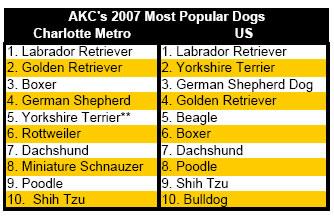 mostpopulardogcharlottechart