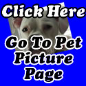 Featured Pets Page Click Here